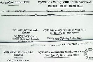 Hậu cưỡng chế thi hành án tại TP. Hồ Chí Minh: Lý do tạm dừng có thỏa đáng?