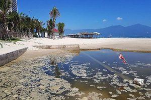 Đà Nẵng: 465,7 tỉ đồng đầu tư hai dự án xử lý nước thải và rác thải
