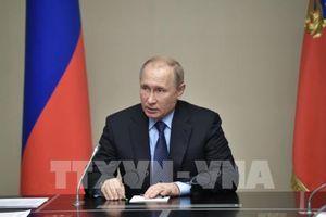 Bất đồng giữa Nga và EU về kịch bản 'Đại châu Âu' (Phần 2)