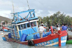 Tàu câu mực bị chìm ở Trường Sa: 44 ngư dân về đất liền an toàn