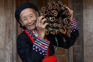 Nỗ lực về đích giúp người dân tộc thiểu số Việt Nam thoát nghèo