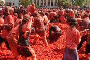 Người dân Tây Ban Nha hào hứng tham gia lễ hội cà chua La Tomatina