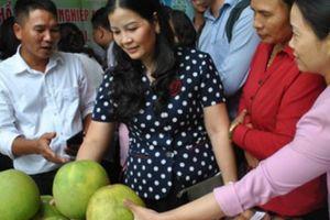 Hà Nội: 300 đại biểu dự diễn đàn kết nối tiêu thụ nông sản an toàn