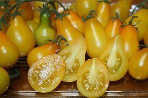 Bà nội trợ Việt lùng mua ráo riết loạt cà chua độc lạ