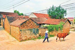 Bảo tồn và phát huy giá trị di tích lịch sử, văn hóa Hà Nội: Người trẻ chung tay, góp sức