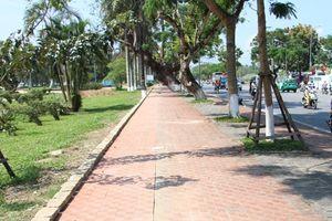 Huế lại thay cây trên đường Lý Thường Kiệt