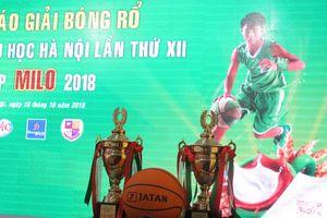 135 đội tham dự Giải Bóng rổ học sinh Tiểu học Hà Nội lần thứ 12