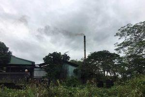 Hà Nội: Ô nhiễm trầm trọng ở xã Dục Tú, huyện Đông Anh: