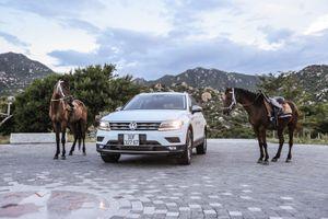 Đánh giá Volkswagen Tiguan Allspace: Thực dụng, ổn định