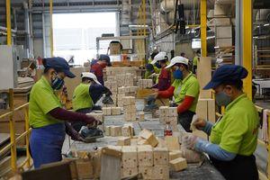 Lâm nghiệp Việt Nam chuẩn bị 'cán đích' 9 tỉ USD xuất khẩu