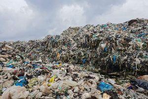 Cà Mau: Bãi rác tạm trong rừng phòng hộ là sai!