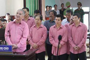 Tuyên án vụ phá rừng lớn nhất tỉnh Bình Định