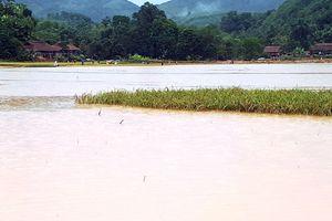Không khí lạnh gây mưa diện rộng, xuất hiện lũ lớn cuốn trôi nhà cửa tại Lào Cai
