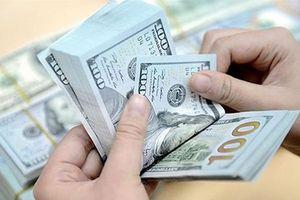 Tỷ giá ngoại tệ 22.10: USD chợ đen tăng ngược chiều thế giới