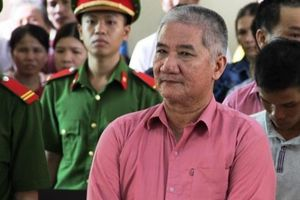 Xử vụ phá rừng 'khủng' nhất Bình Định: 9 lâm tặc lĩnh 81 năm tù