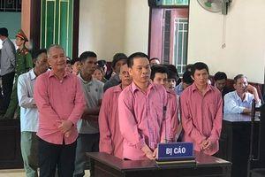 Xử vụ phá rừng lớn nhất Bình Định: 9 'lâm tặc' nhận 81 năm tù