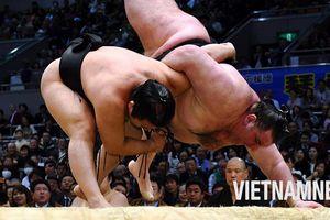 Khám phá vùng đất sinh ra những võ sĩ Sumo xuất sắc nhất Nhật Bản