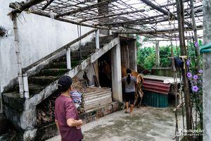 'Khám phá' những ngôi nhà hai tầng dành riêng cho trâu bò ở Nghệ An