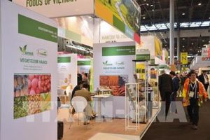 Doanh nghiệp thực phẩm và đồ uống châu Âu quan tâm tới sản phẩm Việt Nam