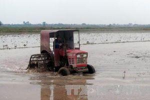 Rà soát các công trình thủy lợi chuẩn bị lấy nước vụ Đông Xuân