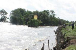 Đồng bằng sông Cửu Long theo dõi chặt chẽ diễn biến mưa lũ và triều cường