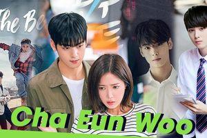 5 bộ phim hay nhất của nam diễn viên Hàn Quốc Cha Eun Woo