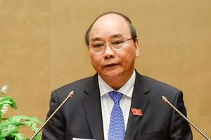 Thủ tướng: Xử lý nghiêm vụ 'Út trọc', 'Vũ nhôm' được cử tri ủng hộ