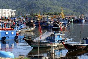 Vì sao dừng triển khai công trình hàng hải đầu tiên theo hình thức PPP tại Đà Nẵng?