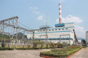 Tập đoàn Công nghiệp Than - Khoáng sản Việt Nam đẩy mạnh kế hoạch tái cơ cấu