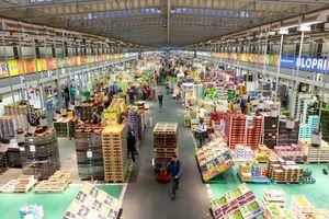 Chợ thực phẩm lớn nhất thế giới giữa lòng Paris