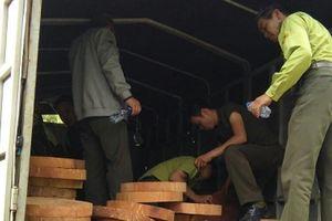Điện Biên: Bắt được đối tượng lao xe lâm sản trái phép vào kiểm lâm