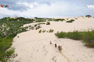 'Qua miền cát nóng' - Sức sống trên những đồi cát nắng cháy nơi 'khúc ruột miền Trung'