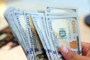 Giá USD tăng mạnh 'đè' các ngoại tệ khác