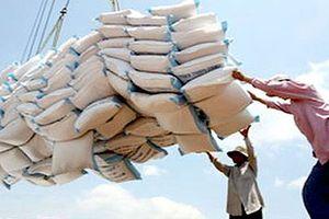 Kiến nghị bỏ xuất khẩu gạo ra khỏi danh mục đầu tư, kinh doanh có điều kiện