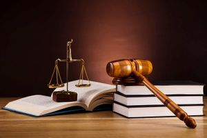 Chính phủ lý giải vì sao Luật Biểu tình, Luật về Hội chưa xong!