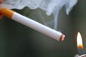 Chất ướp xác, chất tẩy vệ sinh và thành phần thuốc diệt chuột đều có trong khói thuốc lá