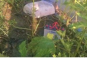 Cà Mau: Nam thanh niên chết thảm trong vườn do bị giật điện từ bẫy chuột