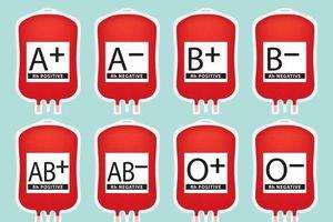 Vì sao các nhóm máu không thể trộn lẫn vào với nhau?