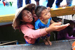 Cuộc sống của người Việt trên Biển Hồ, Campuchia