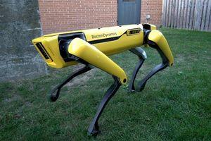 Những robot kỳ lạ và đáng kinh ngạc của Boston Dynamics