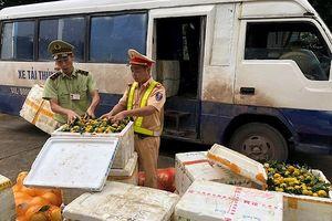 Phát hiện xe khách chở hơn 1 tấn hoa quả nhập lậu