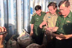 Phó Thủ tướng chỉ đạo thưởng vụ bắt ngà voi ở Đà Nẵng