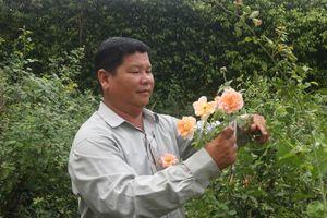 Sớm trở thành tỷ phú từ nghề trồng hoa cây cảnh