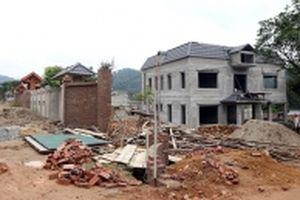 Cần xử lý nghiêm các công trình xây dựng trái phép trên đất rừng tại huyện Sóc Sơn
