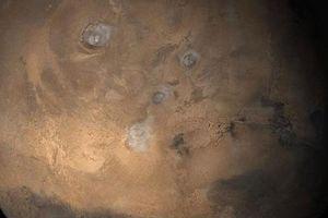'Thủy tổ loài người' đang sống trên Sao Hỏa?