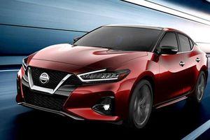 Sedan Nissan Maxima 2019 mạnh 300 mã lực có gì 'hot'?