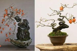 Ngắm hồng giòn bonsai tạo dáng nghệ thuật đỉnh cao