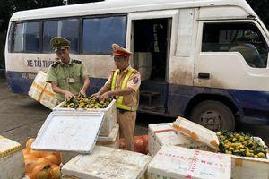 Nhập lậu gần 1,4 tấn hoa quả Trung Quốc để bán kiếm lời