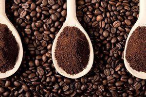 Giá cà phê hôm nay 24/10: Giảm dưới 37.000 đồng/kg