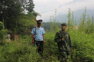 Ban Chỉ đạo 389 yêu cầu xác minh thông tin buôn lậu gia súc tại Lào Cai, Hà Giang